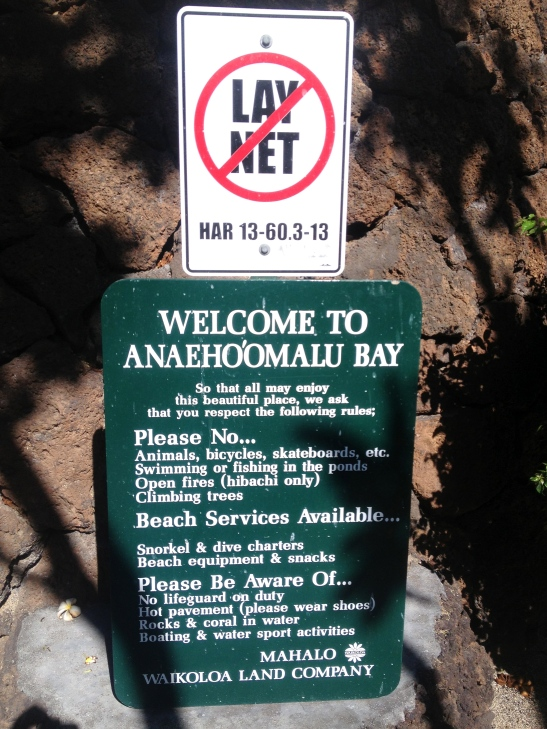 Please read and follow the guidelines at the Beach Parks of Hawaii Island